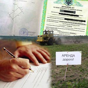 Когда заключается договор аренды земли?