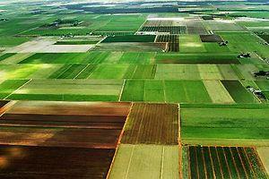 Расчет платы за пользование землей