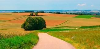 Оформление договора переуступки права аренды земли