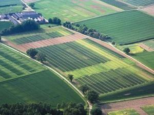 Для каких целей можно использовать землю в аренду от администрации города