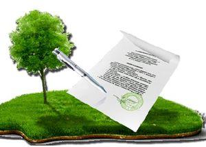 Составление договора аренды земли у государства