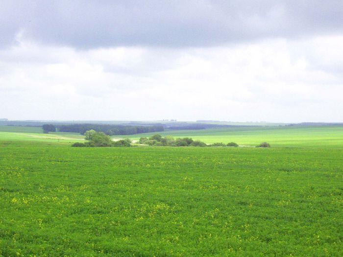 Цели использования земельных участков