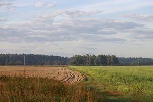 Договор бессрочного пользования земельным участком