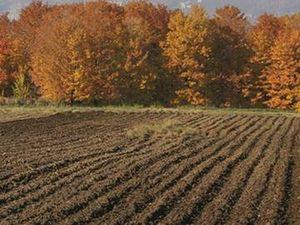Переоформление права бессрочного пользования земельным участком