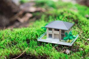 Оформление договора дарения дома с земельным участком