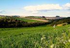 Правила составления и заключения договора купли-продажи земельного участка
