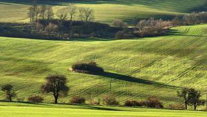 Какая информация о земельном участке содержится в кадастровом плане