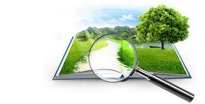 Как быстро найти земельный участок по кадастровому номеру
