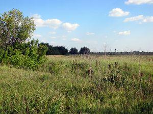 Регистрация в Росреестре передачи права собственности на земельный участок при его продаже