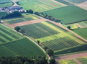 Категории земель для использования