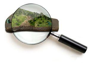 Как узнать кадастровый номер земельного участка в отделениях Росреестра