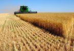 Правила использования земель сельскохозяйственного назначения