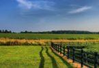Как получить кредит под залог земельного участка