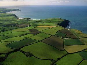 Описание процедуры раздела земельных участков