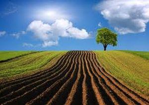 Авансовые платежи при уплате налога на землю