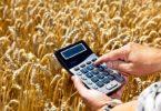 Правила, сроки и порядок уплаты земельного налога физическими лицами