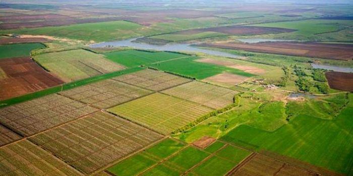 Проблемы выделения земельных паев