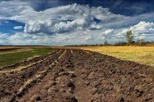 Законы РФ об уплате налогов с продажи земельных участков