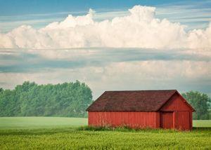 Перевод земель сельскохозяйственного назначения в промышленное