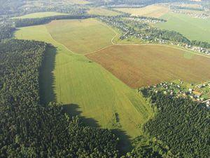 Особенности аренды земель сельхозназначения