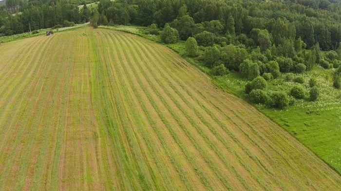 Продажа земель сельхозназначения между физическими лицами