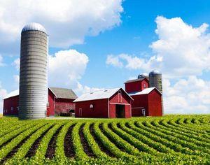 Как продать земельный участок сельхозназначения