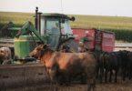 Правила и порядок продажи земель сельхозназначения