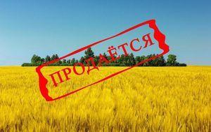 Продажа земель сельхозназначения