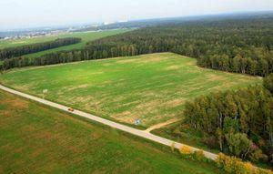 Как составить уведомление о продаже земли сельхозназначения