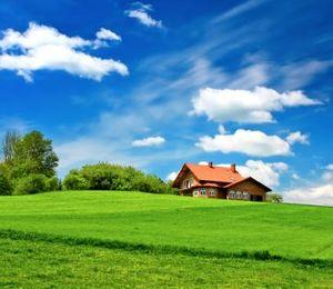 Как проверить участок земли перед покупкой его у государства