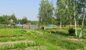 Проверка границ и категории использования земли перед ее покупкой