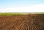 Что такое рыночная стоимость земельного участка и как ее определить